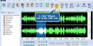 Create Silence in Your Audio File